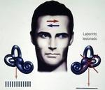 Vestibulopatías periféricas unilaterales